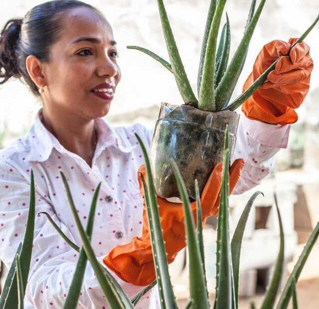 tuinbouwer-worden